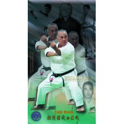 Poster-collage del maestro Taiji Kase, a colore, 40x70 cm (Shotokan ryu kase ha)