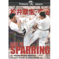 DVD BEST OF SPARRING de Karaté Kyokushinkai