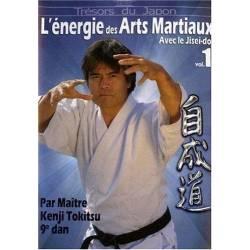 DVD L'énergie des Arts martiaux avec Kenji Tokitsu, 9e Dan, VOL.1